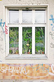 Sichtschutz Fenster Selber Machen. cool sichtschutz fenster selber ...