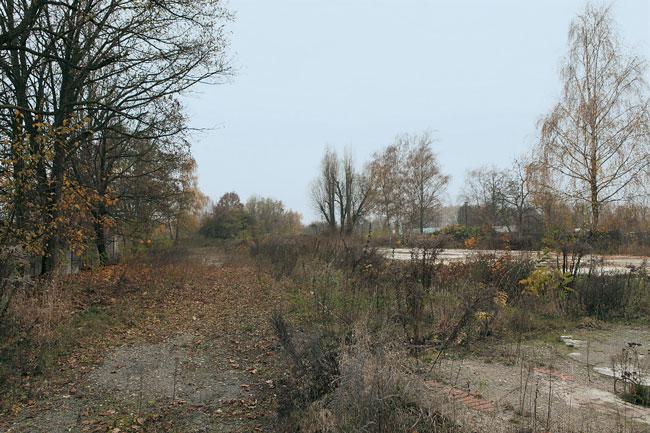 Brache auf dem Truppenübungsplatz in Lichterfelde Süd