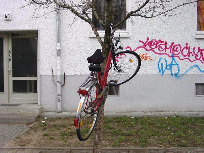 Rad hängt im Baum