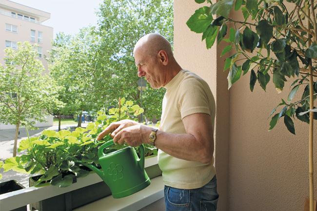 Mieter beim Wässern der Balkonpflanzen