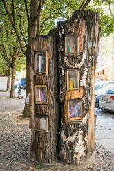 Baumstamm mit Bücherfächern