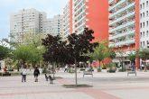 Wohnumfeldgestaltung am Anton-Saefkow-Platz