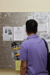 Studium von Wohnungsanzeigen am Schwarzen Brett