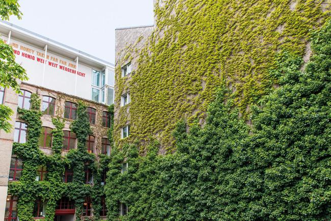 Bepflanzte Fassade