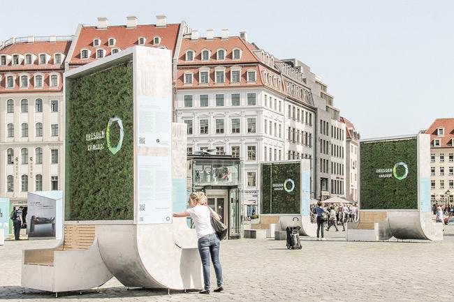 Mobile Mooswände in Dresden