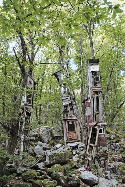 Leserfoto Oktober 2017 - Kunstwerke im Wald