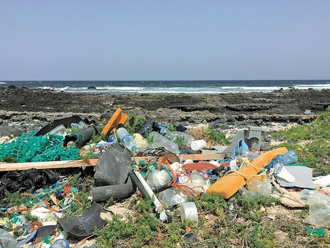 Mülltourismus