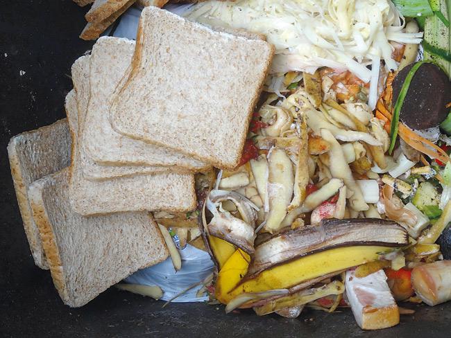 Toastbrot im Bio-Abfall