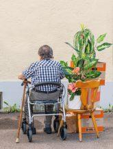 Alt, gehandicapt und rausgeworfen