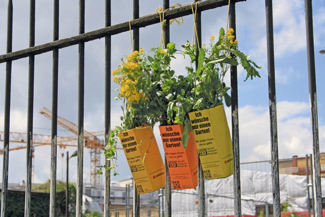 Am Zaun befestigte Pflanzgefäße