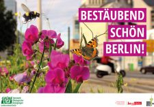 Titelseite der Broschüre , Bestäubend schön Berlin!'