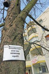 Potestplakat gegen die Baumfällung