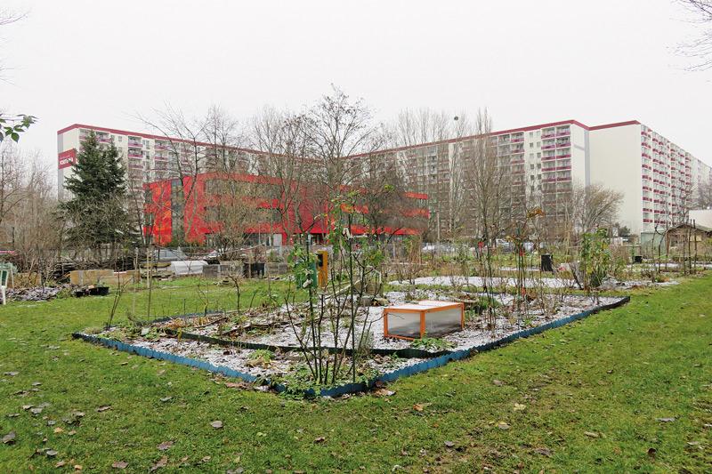 Gärtnerfläche, im Hintergrund Bebauung an der Landsberger Allee