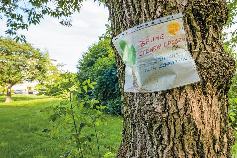 Protestplakat am Baum